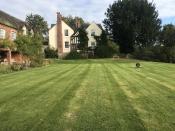 Domestic Grass Cutting