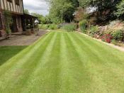 Domestic Grass Cutting