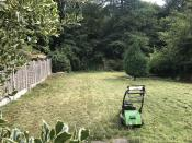 Domestic Grass Cutting - After